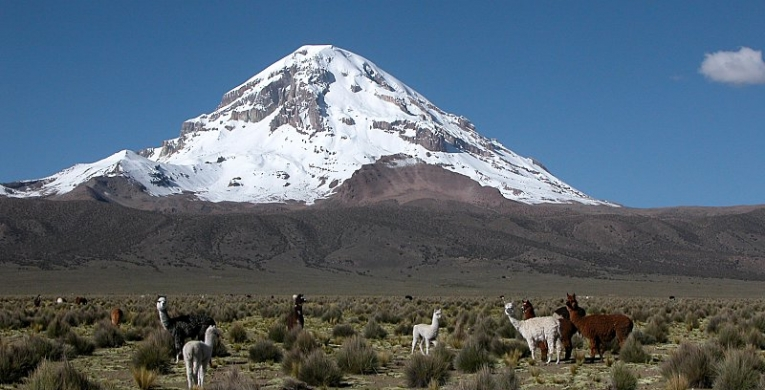 OB-LPB/31  3 Days and 2 Nights Tour, Sajama Trekking